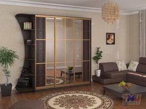 Фото. Шкаф-купе с кожей и зеркалом в гостиную ШК12
